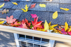Fall Home Maintenance Checklist for your Silverdale, WA home