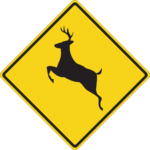How to lower your risk for a deer collision in Silverdale, WA