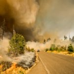 Insurance Coverage for Natural Disasters in Silverdale, WA
